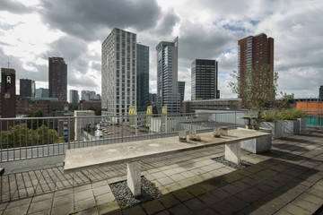 Office buildings the city of Rotterdam