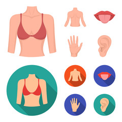 Back of the person, mouth, hand, ear. Part of the body set collection icons in cartoon,flat style vector symbol stock illustration web.