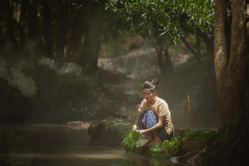 Asian woman wearing traditional Thai culture at the forest.Daily life of rural women in Thailand,Asia people at farmland. Fototapete