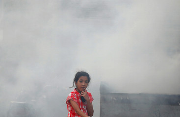 Smoke from a grilled meat vendor surrounds a girl as she waits for Iftar, during the Muslim holy fasting month of Ramadan in Toukh
