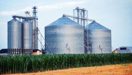 Silos for storing grain harvest. Concept of agriculture and industry