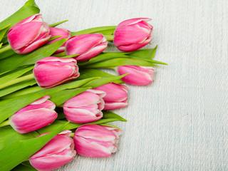 Tulip bouquet on light background, copy space