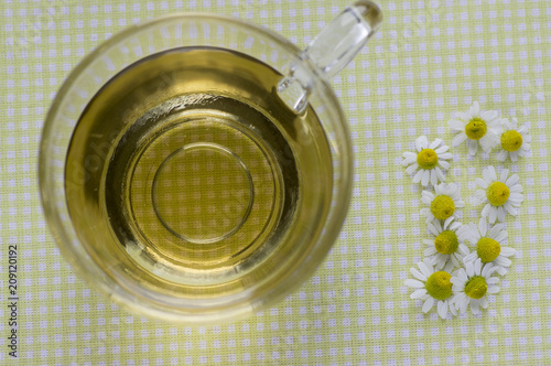 Matricaria chamomilla white flowers with yellow center trasparent matricaria chamomilla white flowers with yellow center trasparent cup of tea on tablecloth fresh mightylinksfo