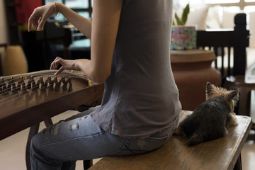 Young Singaporean woman playing the Guzheng