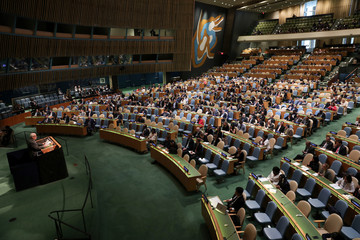Palestinian Ambassador to the United Nations Riyad Mansour addresses a United Nations General Assembly meeting in New York