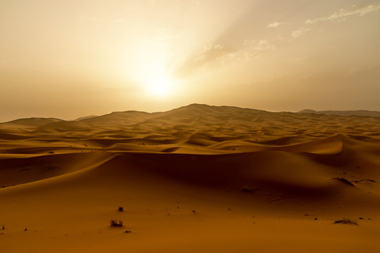 Golden dunes at sunrise