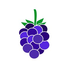 Flat icon grapes. Vector illustration.