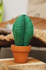 pelote d'épingles et d'aiguilles en forme de cactus
