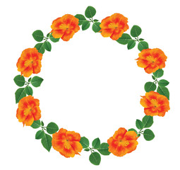 Orange flowers wreath of live flowers with space for text or photo.