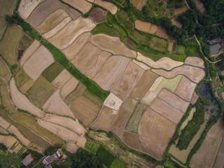 Aerial photography bird-eye view of farm farmland nature landsca