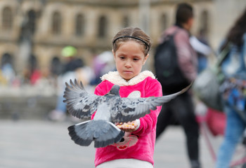A girl feeds pigeons at Bolivar Square in Bogota, ahead of the second round of presidential election in Colombia