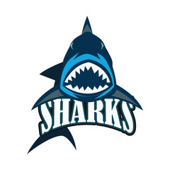 blue sharks logo with text space for your slogan / tag line, vector illustration