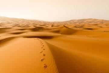Footprints in golden dunes at sunset
