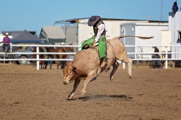 Cowboy Bull riding At A Country Rodeo