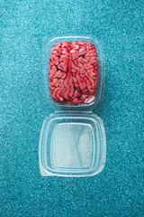 Brain in a plastic box