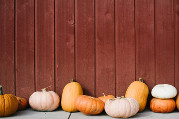 Varitey of pumpkins lined up in front of barn
