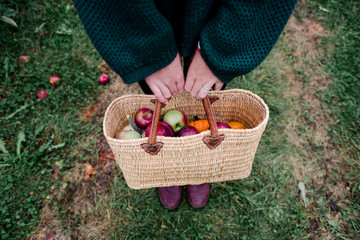 View of basket with apples and pumpkins