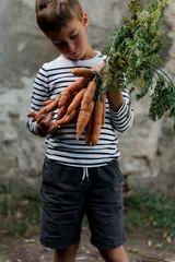 Little boy holding carrots