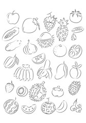 graphic fruit, vector