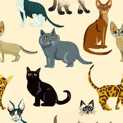 Cartoon cats seamless pattern,  Illustration  breeds of cats
