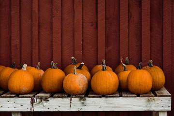 a group of pie pumpkins