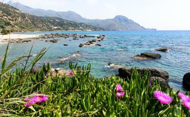 Wall Mural - Entspannung, Ferien, Reise, Urlaub in Griechenland: Palmenstrand von Preveli auf Kreta :)