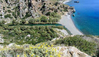Wall Mural - Entspannung, Tourismus, Reise, Urlaub in Griechenland: Palmenstrand  mit Lagune von Preveli auf Kreta :)