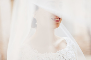Beautiful bride smiling under the veil