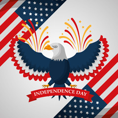 eagle fireworks national symbol american independence day vector illustration