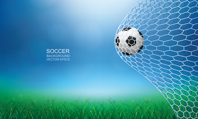 Soccer football ball in soccer goal with green grass field area and light blurred bokeh background. Vector illustration.