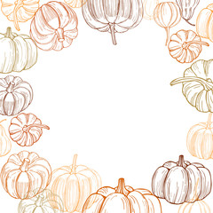 Vector background with pumpkins. Hand drawn vegetables on white background.