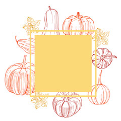 Vector frame  with pumpkins. Hand drawn vegetables on white background.