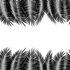 Black Palm Leaf on White Background. Vector Illustration