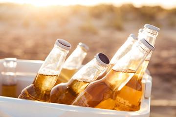 Close up of beer bottles cooling in a fridge
