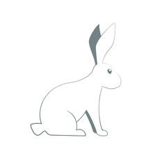 rabbit outline icon