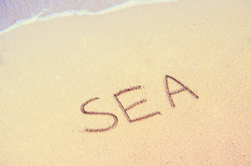 Word SEA written in the wet sand near sea comb. Summer mood.