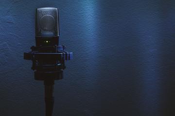 Modern Condenser Microphone on Stand