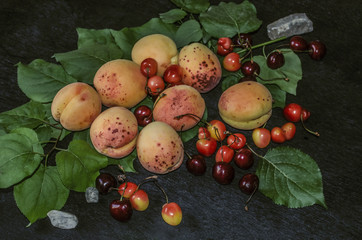 Beautiful large apricots and various types of cherries with green leaves on a black background