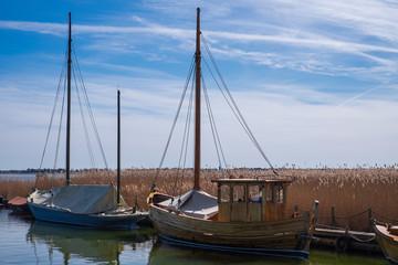 Segelboote am Bodden