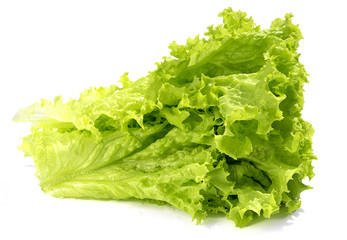 lettuce leaves isolated on white background, side view