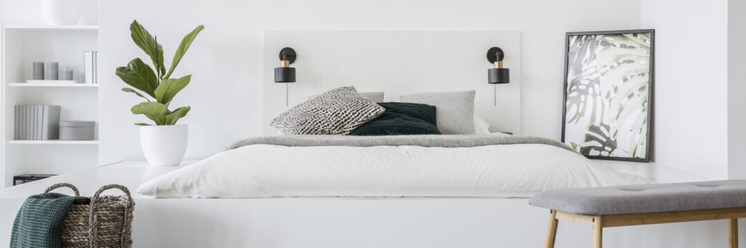 Fresh green plant standing on platform by the mattress with white bedding and patterned pillows, two lamps on bedhead and simple poster in the corner
