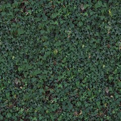 A Seamless Texture for natural backgrounds and materials