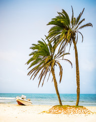 palm trees on white sand beach and powerboat