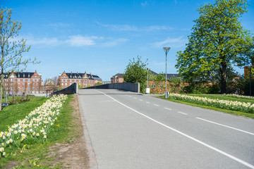 empty road and bridge, beautiful blossoming daffodils and historical architecture in copenhagen, denmark