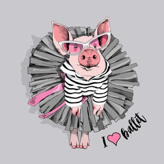 Pig in a striped cardigan, in a ballet black tutu skirt, in a pink sunglasses. Vector illustration.