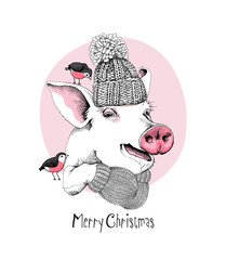 Christmas card. Portrait of the Pig in a knitted hat and mittens on a pink background. Vector illustration.