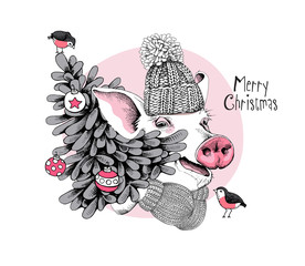 Christmas card. Portrait of the Pig in a knitted hat, mittens and with a fir-tree on a pink background. Vector illustration.