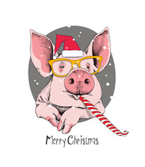 Christmas card. Portrait of the pink Pig in a red Santa's cap, yellow glasses and with a funny party whistle blowing on a gray background. Vector illustration.