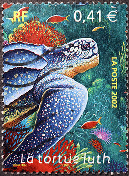 Leatherback turtle on french postage stamp