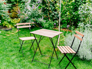 Table And Chairs In Small Green Intimate Garden